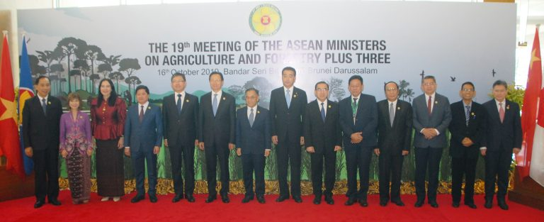 Joint Press Statement of The Nineteenth Meeting of The ASEAN Ministers on Agriculture and Forestry and The Ministers of Agriculture of The People's Republic of China, Japan and The Republic of Korea (The 19<sup>th</sup> AMAF PLUS Three)
